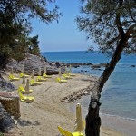 royal-paradise-resort-spa-03